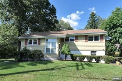Cresskill Single Family Home For Sale: 7 Delmar Avenue