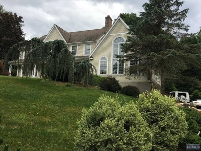 Upper Saddle River Single Family Home For Sale: 14 Willow Hill