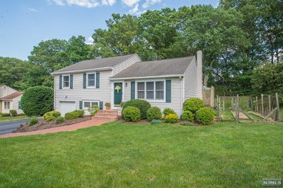 Morris County Single Family Home For Sale: 44 Countrywood Drive