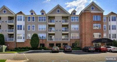 Elmwood Park Condo/Townhouse For Sale: 253 Cory Lane