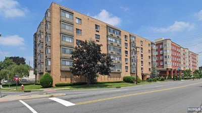 Hackensack Condo/Townhouse For Sale: 5 Linden Street #4d