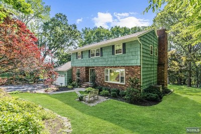 Morris County Single Family Home For Sale: 1 Pine Hill Road