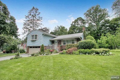 Park Ridge Single Family Home For Sale: 6 Mapleleaf Drive