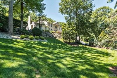 Morris County Single Family Home For Sale: 39 Franklin Lane