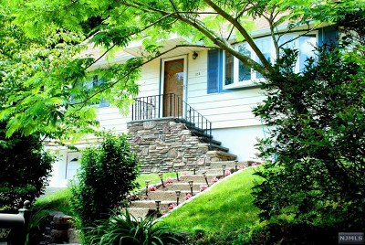Bloomingdale Single Family Home For Sale: 125 Clark Street