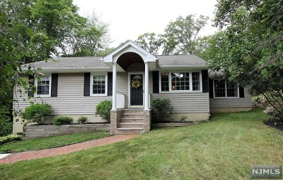 Ringwood Single Family Home For Sale: 549 Stonetown Road