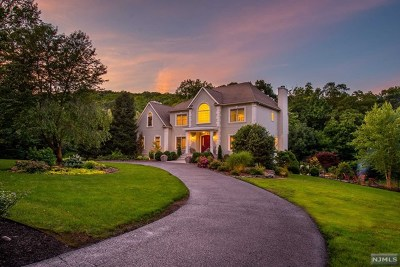 Morris County Single Family Home For Sale: 115 Brook Valley Road