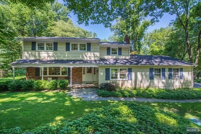 Morris County Single Family Home For Sale: 30 Green Hill Road