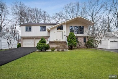 Demarest Single Family Home For Sale: 14 Meadow Street
