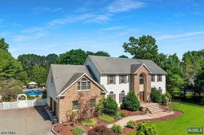 Morris County Single Family Home For Sale: 154 Hillview Road