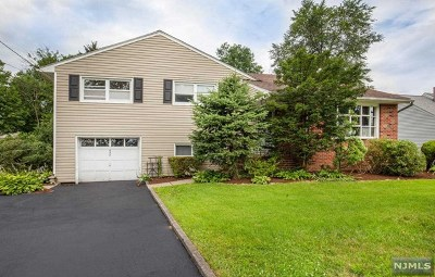 New Milford Single Family Home For Sale: 624 Boulevard