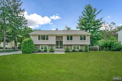 Closter Single Family Home For Sale: 110 Piermont Road