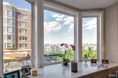 Edgewater Condo/Townhouse For Sale: 6108 City Place
