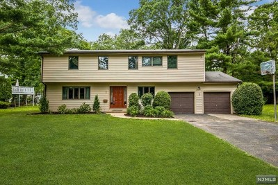Essex County Single Family Home For Sale: 7 Bunyan Drive