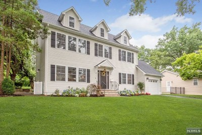 Essex County Single Family Home For Sale: 6 Carlton Drive