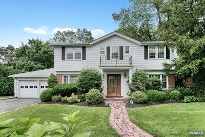 Englewood Cliffs Single Family Home For Sale: 10 Willow Drive
