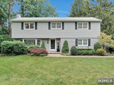 Woodcliff Lake Single Family Home For Sale: 18 Ravine Drive