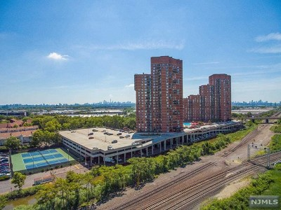 Hudson County Condo/Townhouse For Sale: 438 Harmon Cove Tower