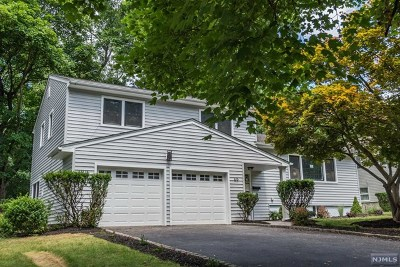 Essex County Single Family Home For Sale: 65 Eastbrook Terrace