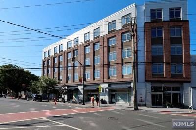 Hudson County Condo/Townhouse For Sale: 217 Newark Avenue #501