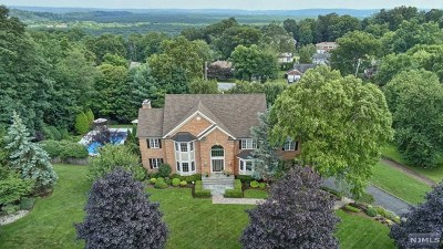 Morris County Single Family Home For Sale: 20 Nathan Drive