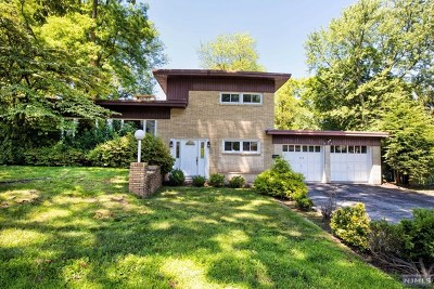 Cresskill Single Family Home For Sale: 123 Phelps Avenue