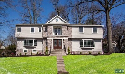 Cresskill Single Family Home For Sale: 169 Hillside Avenue