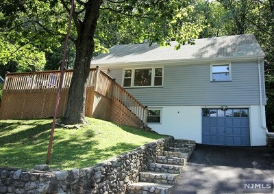Bloomingdale Single Family Home For Sale: 120 Rafkind Road
