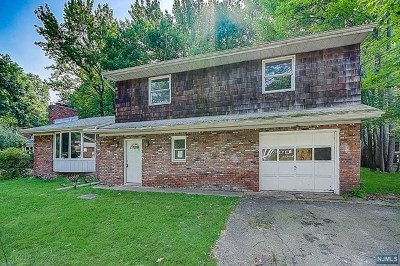 Essex County Single Family Home For Sale: 39 Carlos Drive