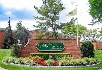 Wayne Condo/Townhouse For Sale: 28 Knox Terrace #1b