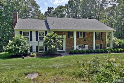 Morris County Single Family Home For Sale: 79 Green Hill Road