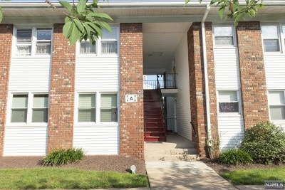 Passaic County Condo/Townhouse For Sale: 100 Pierson Miller Drive #A-11