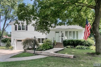 Bergen County Single Family Home For Sale: 231 Devon Road