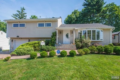 Passaic County Single Family Home For Sale: 116 Rolling Hills Road
