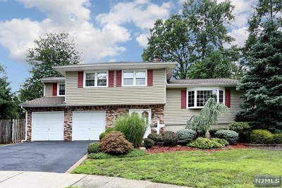 Bergen County Single Family Home For Sale: 2 Scott Court