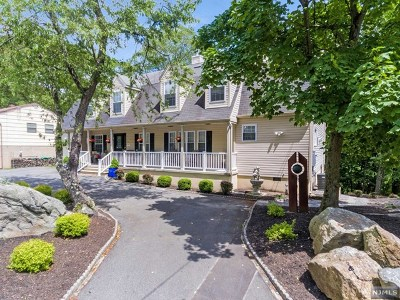 Rockaway Township Single Family Home For Sale: 195 West Lake Shore Drive