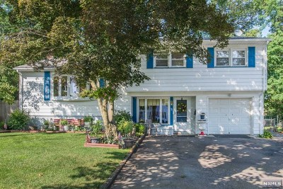 Pompton Lakes Single Family Home For Sale: 30 Henderson Court