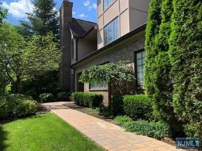 Park Ridge Condo/Townhouse For Sale: 231 Cambridge Oaks