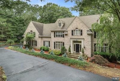 Passaic County Single Family Home For Sale: 19 Horizon Drive