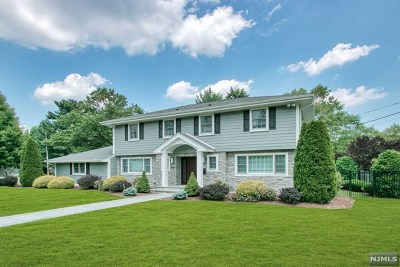 Englewood Cliffs Single Family Home For Sale: 21 Egan Place
