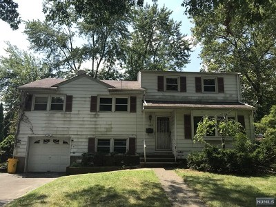 New Milford Single Family Home For Sale: 1154 Rosse Avenue