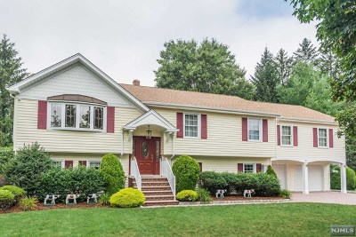 Ramsey Single Family Home For Sale: 9 Indian Valley Road
