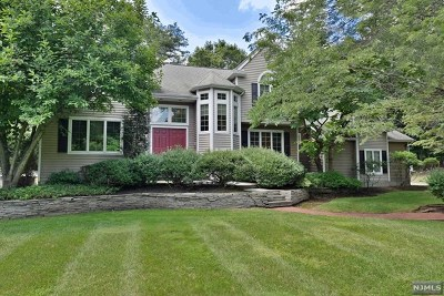 Upper Saddle River Single Family Home For Sale: 301 West Saddle River Road