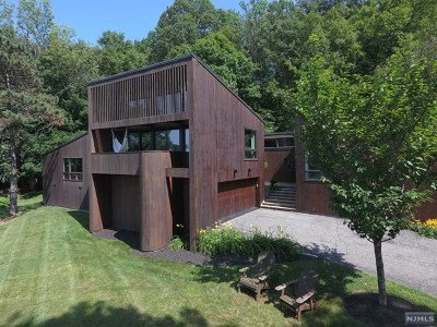 Morris County Single Family Home For Sale: 9 Reed Road