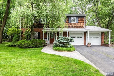 Park Ridge Single Family Home For Sale: 241 Ellin Drive