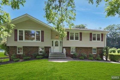 Wyckoff Single Family Home For Sale: 416 Woodbury Drive