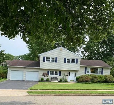 Passaic County Single Family Home For Sale: 8 Braemar Drive