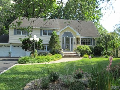 Mahwah Single Family Home For Sale: 210 Overlook Place