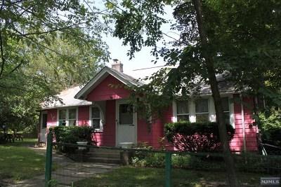 Morris County Single Family Home For Sale: 30 Minnehaha Path