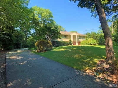 Montville Township Single Family Home For Sale: 230 Brook Valley Road